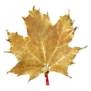 Picture of Gold Maple Leaf