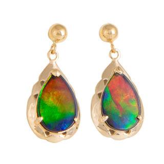 Ammolite earings
